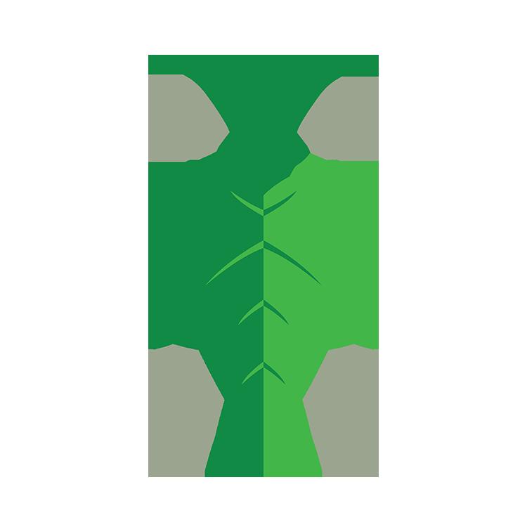 Content Grasshopper Logo